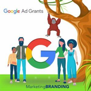 google ad grants espainia, google ad grants